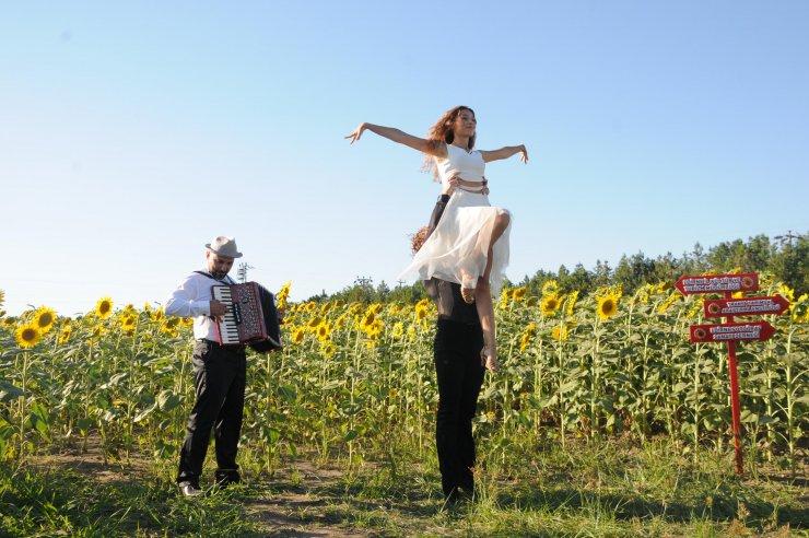 'Trakya'nın sarı gelini' ayçiçeği tarlalarında, fotoğraf şöleni