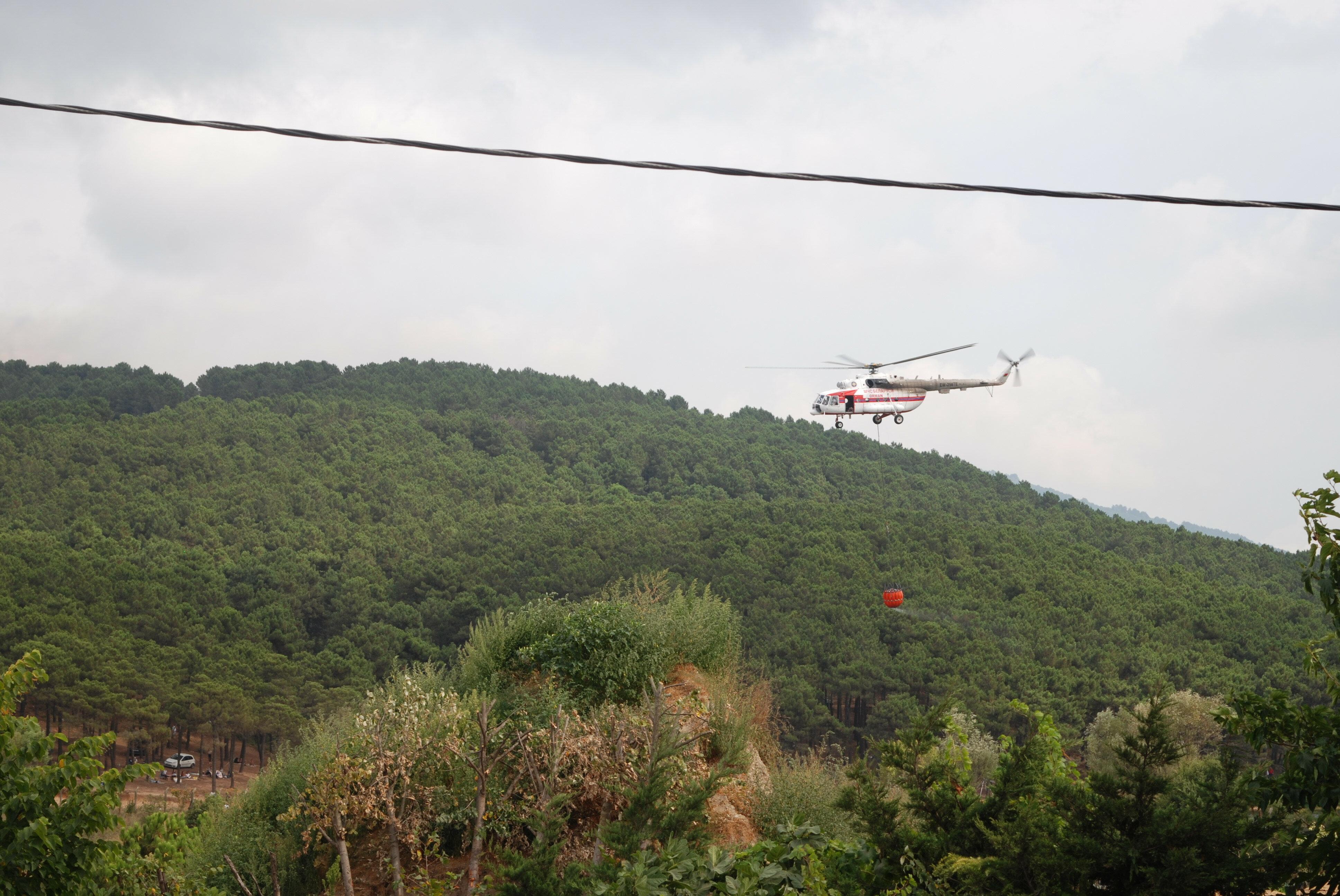 Sultanbeyli Aydos Ormanı'nda korkutan yangın!