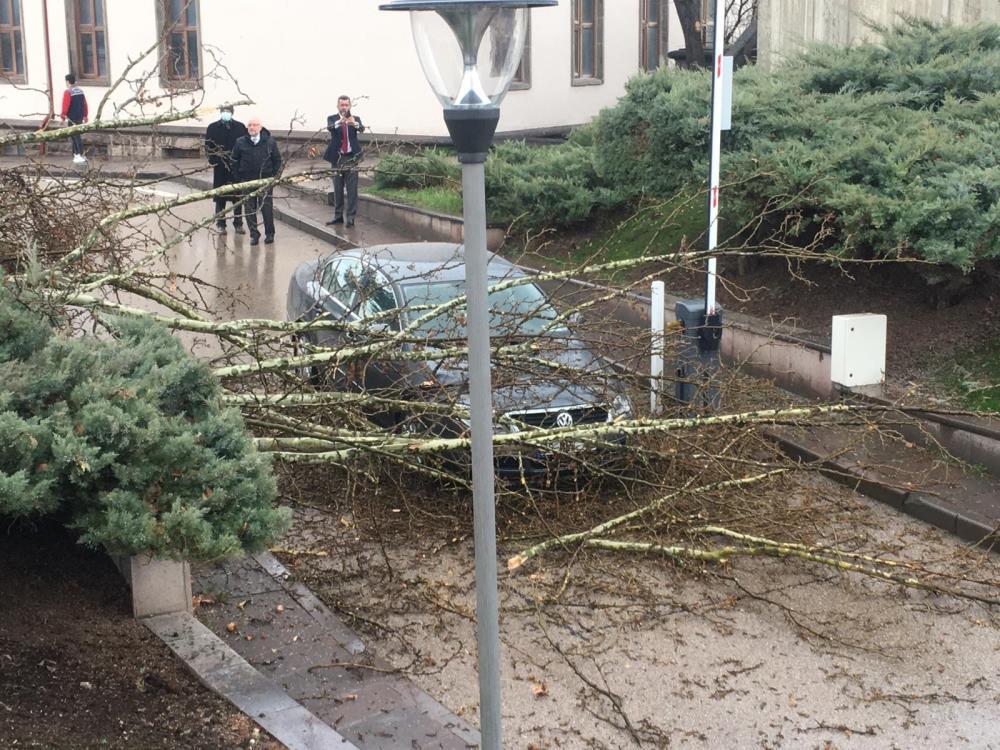 SON DAKİKA! Meclis bahçesine yıldırım düştü!