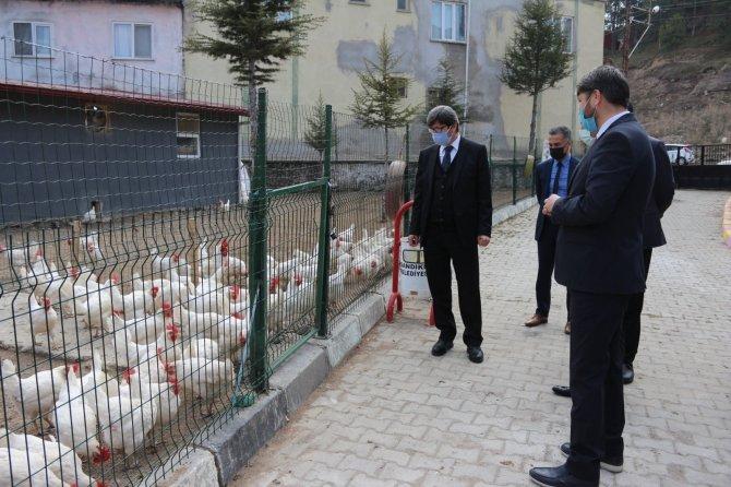 Öğretmenlerden ilginç proje! Tavuk yetiştirip yumurta satarak 18 öğrenciye burs sağladılar