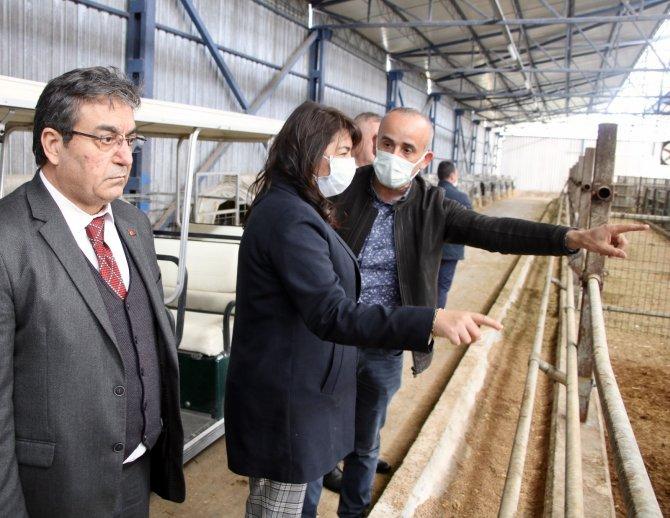 """AK Parti'li İskenderoğlu süt üretim tesisini ziyaret etti: """"Süt ürünlerinde marka şehir imajı geliştirilecek"""""""