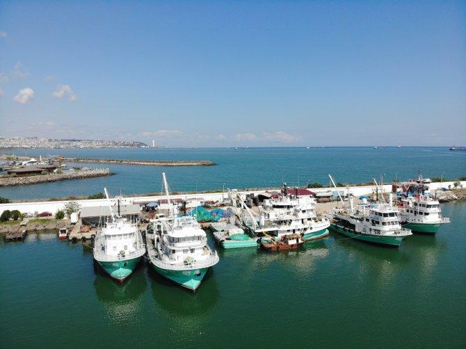 """Balıkçılar son kez """"Vira bismillah"""" diyecek! Av sezonu 15 Nisan'da sona eriyor"""