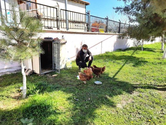 Çocuklara sorumluluk duygusu aşılamak için okul bahçesine tavuk kümesi yapıldı