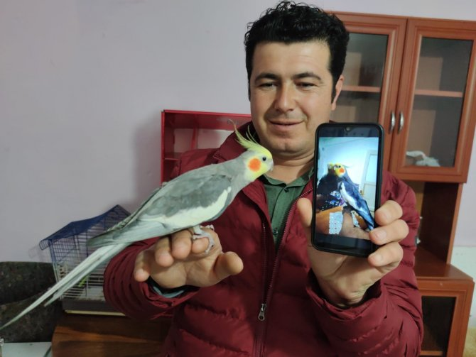 """Papağan, sahibini işe """"Ölürüm Türkiye'm"""" parçasıyla uğurluyor"""