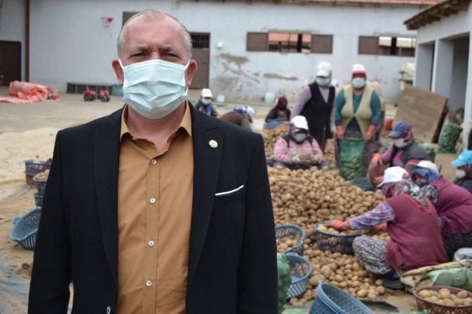 Erdoğan talimat vermişti, TMO'nun patates alımı Manisalı çiftçilerin yüzünü güldürdü