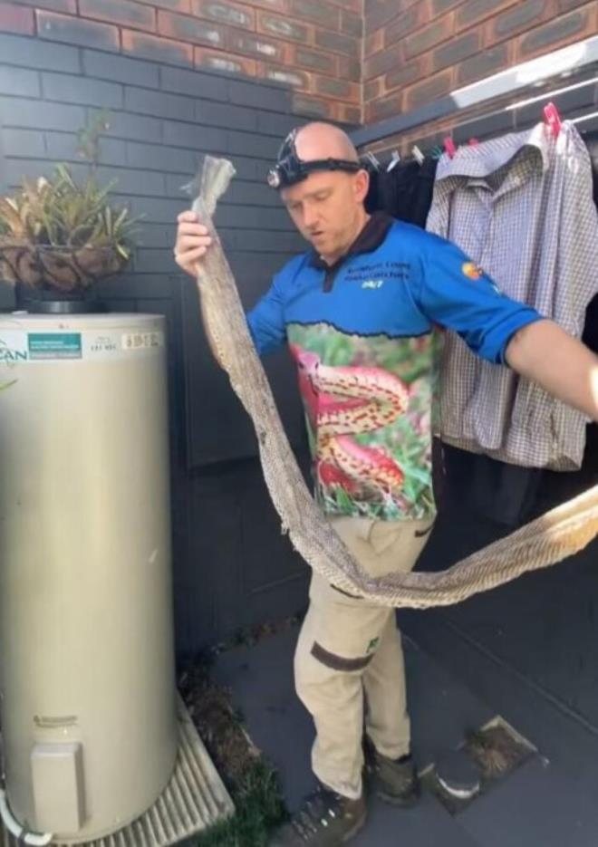 İnanılmaz olay Kapının önünde 4 metre uzunluğunda yılan derisi bulundu