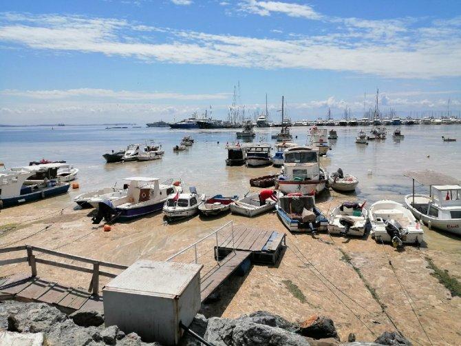 Pendik Marina'da korkunç manzara! Deniz salyaları kapladı