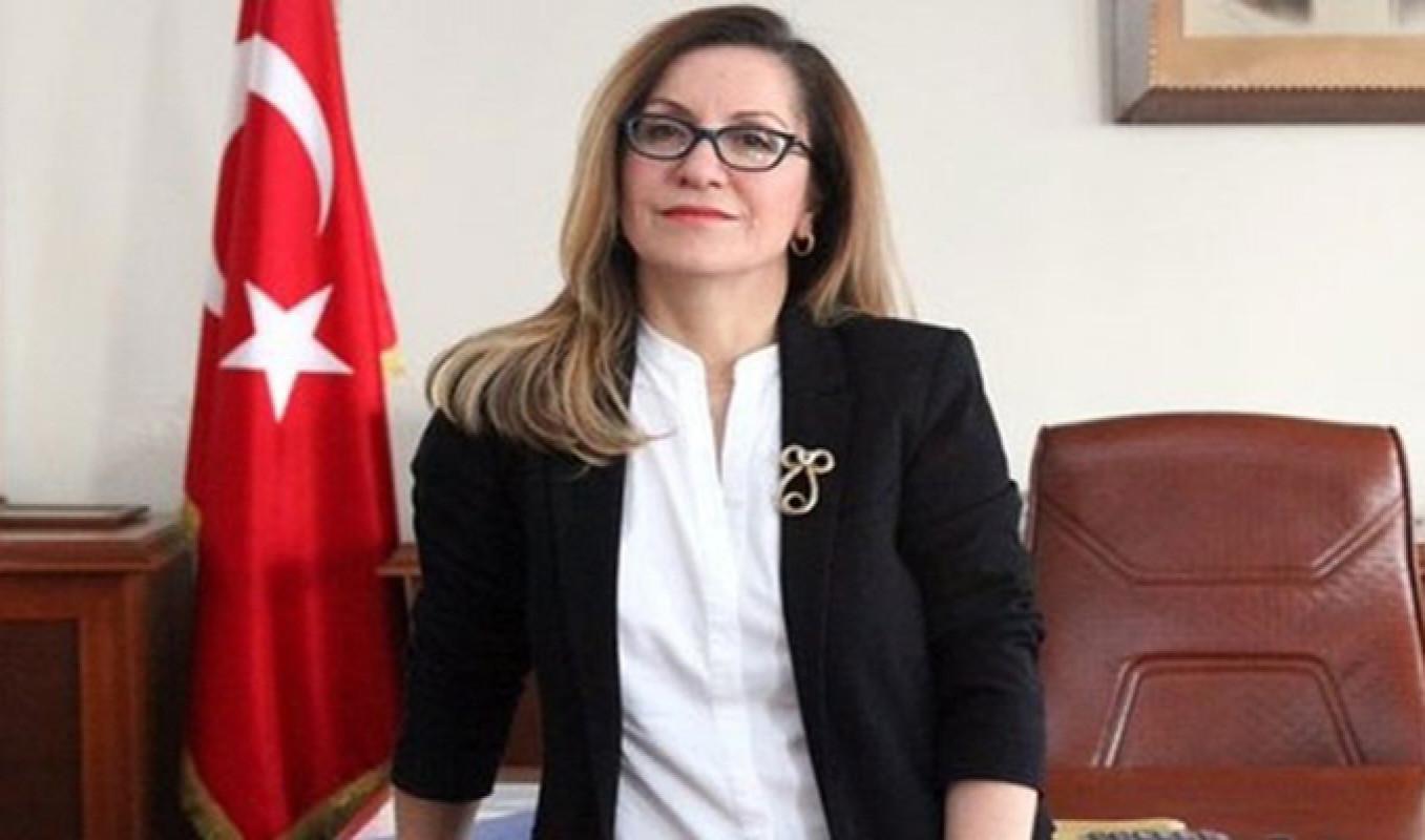 Mimar Sinan Üniversitesi Rektörü Prof. Dr. Handan İnci Elçi kimdir? Nereli? Kaç yaşında?