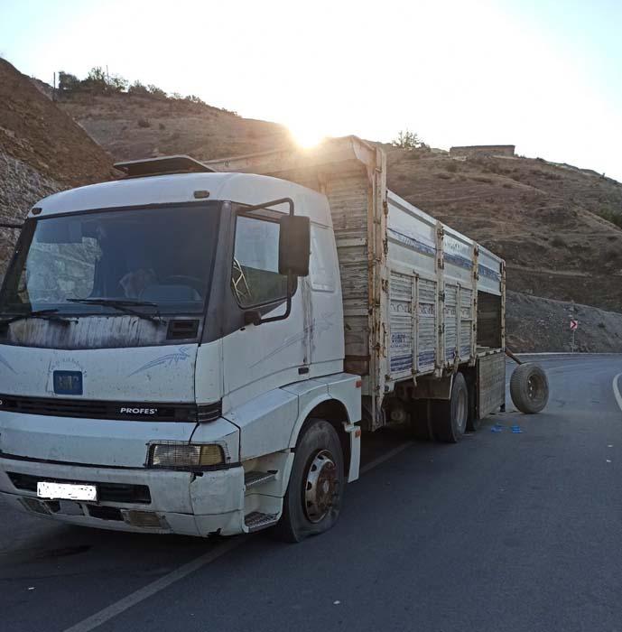 Siirt'te insan kaçakçıları jandarmaya ateş açtı: 2 kişi öldü, 12 kişi yaralandı!