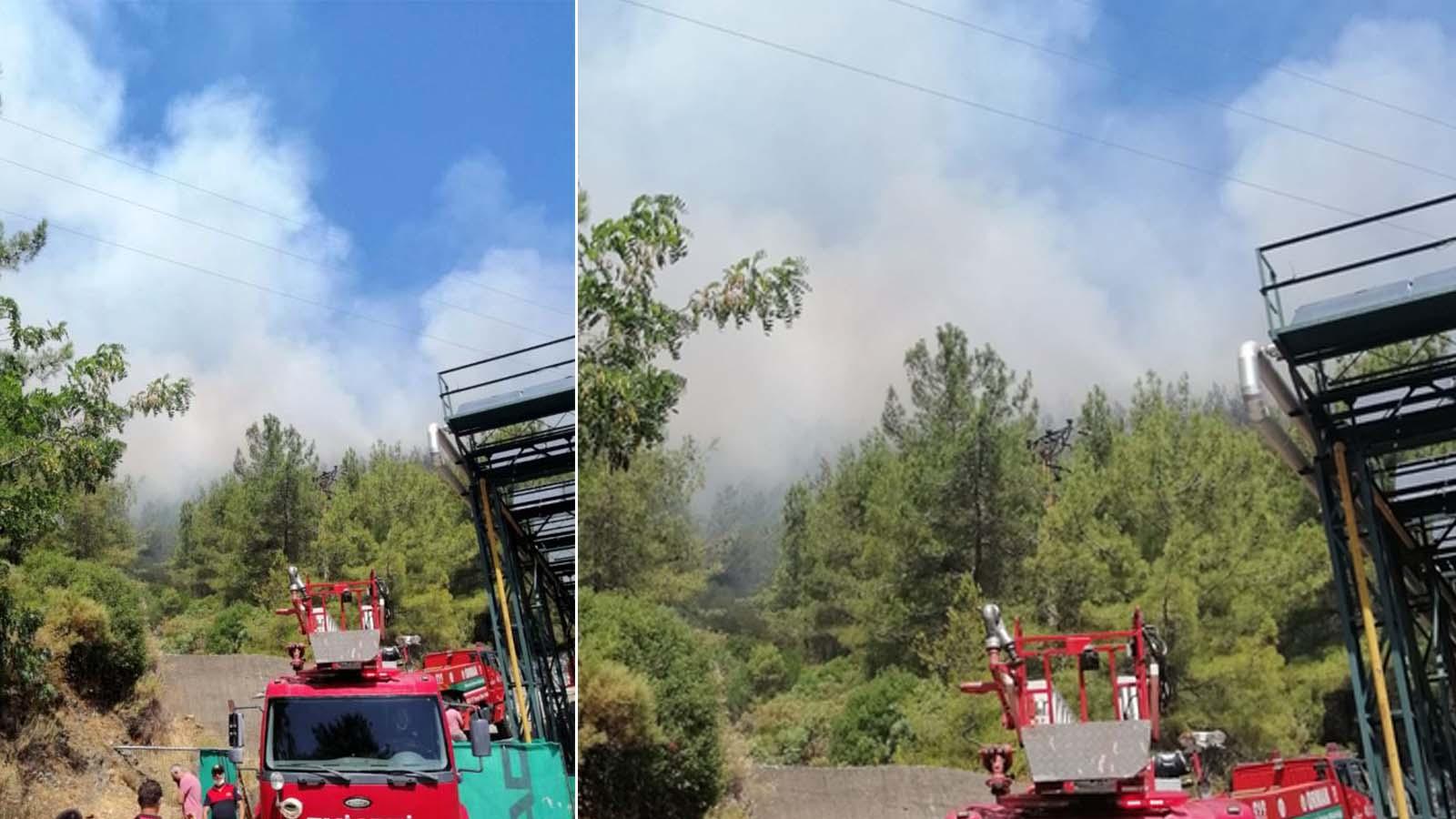 Son dakika | Muğla Marmaris'te orman yangını çıktı! Ekipler müdahale ediyor