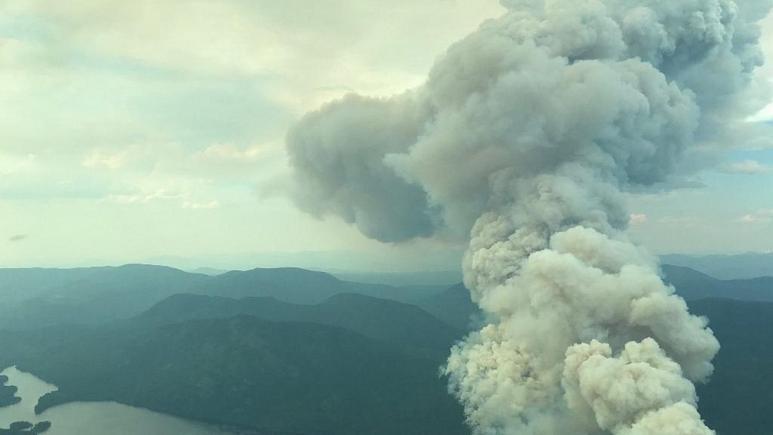 Ülke alevlere teslim oldu! Kabus gibi: 130dan fazla orman yangını çıktı
