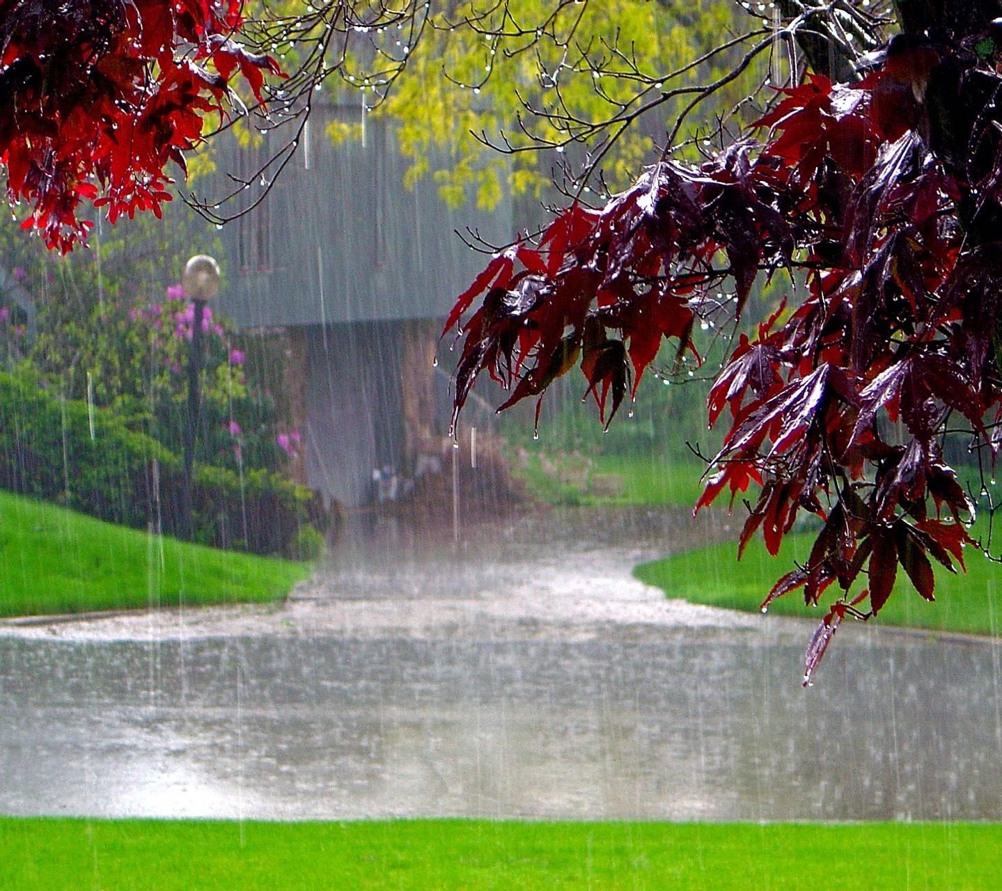 Meteoroloji'den uyarı üstüne uyarı! Bu bölgelerde yaşayanlar dikkat! Pazar günü şemsiyesiz çıkmayın!