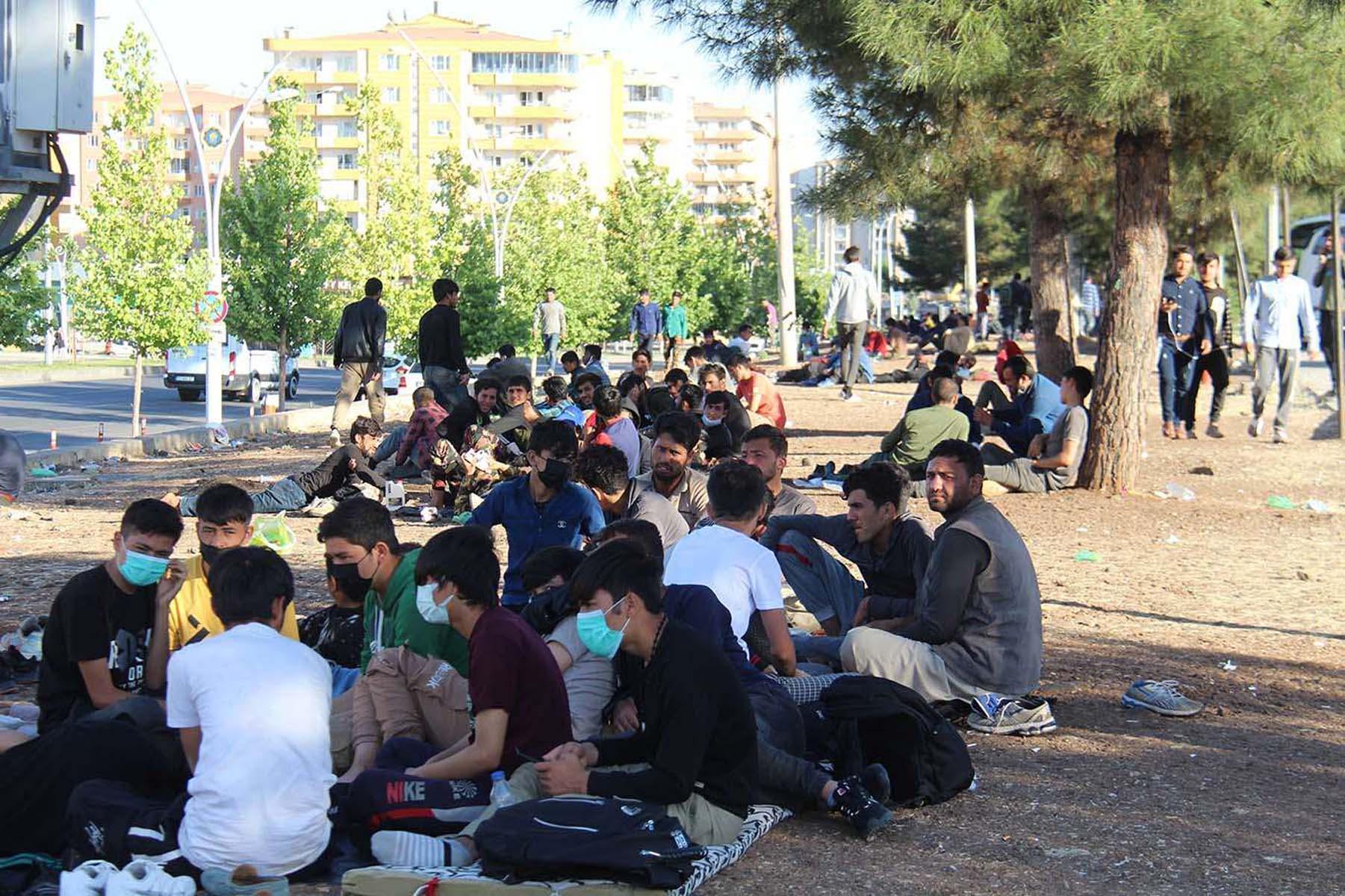Afganlılar Türkiye'de kalmak için her yolu deniyor! İntihara kalkışıyorlar, sabun yiyip içiyorlar