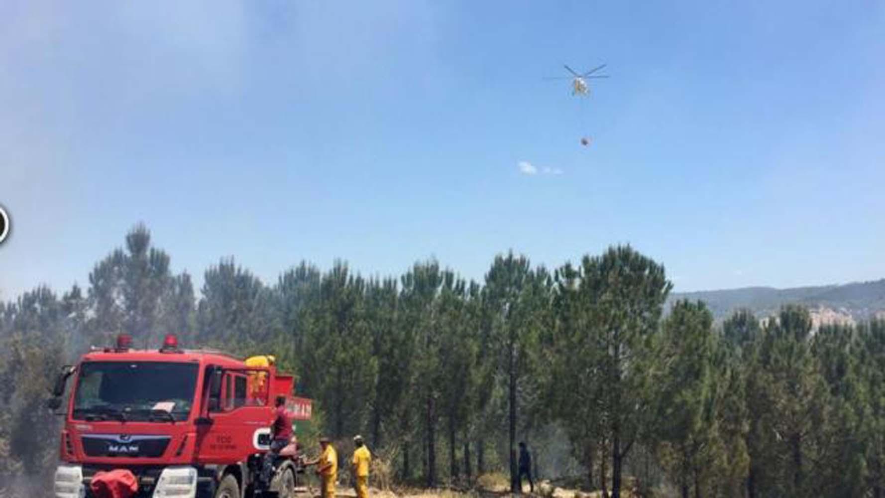 Bolu'da çıkan yangın büyümeden kontrol altına alınarak söndürüldü