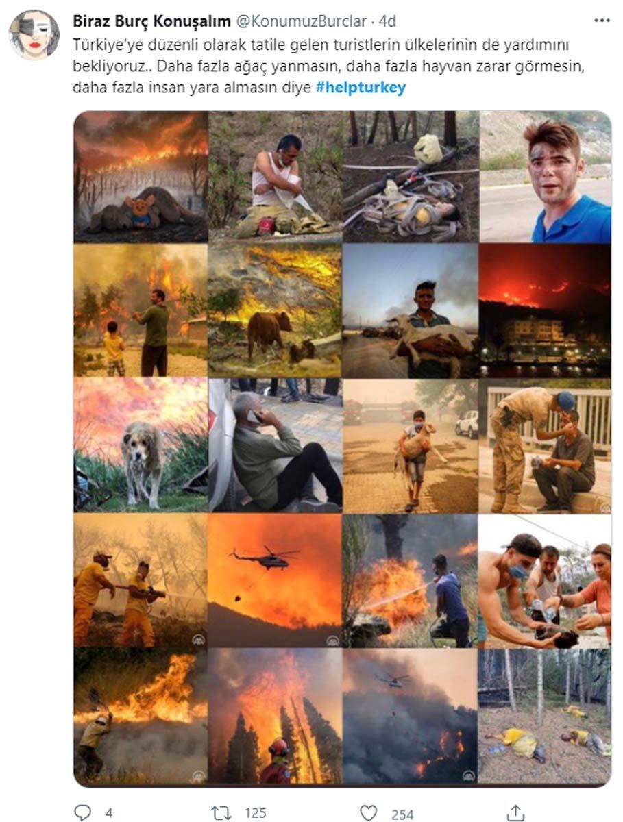 Vatandaşlar orman yangınlarıyla mücadelede destek istiyor! #helpturkey sosyal medyada dünya gündemine girdi