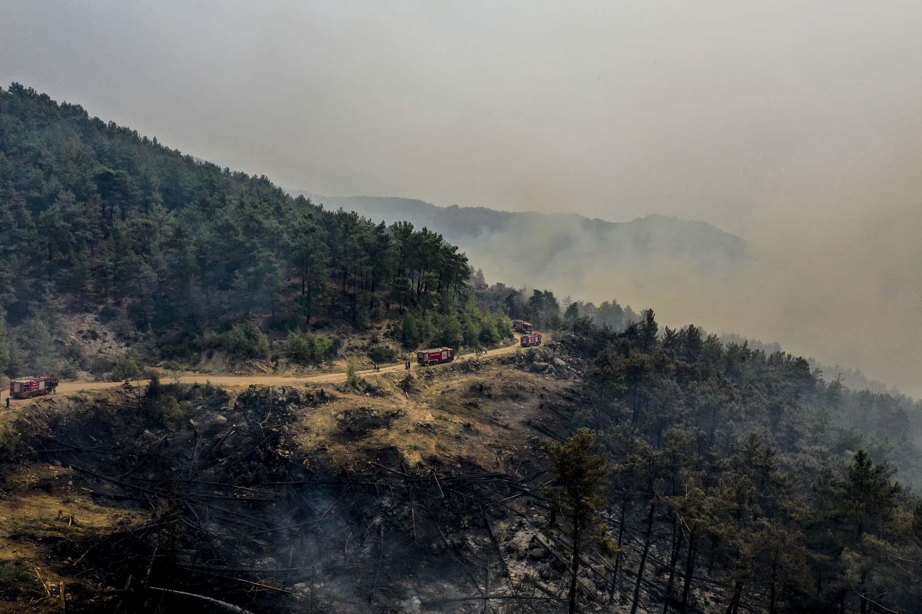 Son dakika   Bakan Pakdemirli açıkladı! Alevlerle mücadele sürüyor: 7 ilde 16 orman yangını devam ediyor
