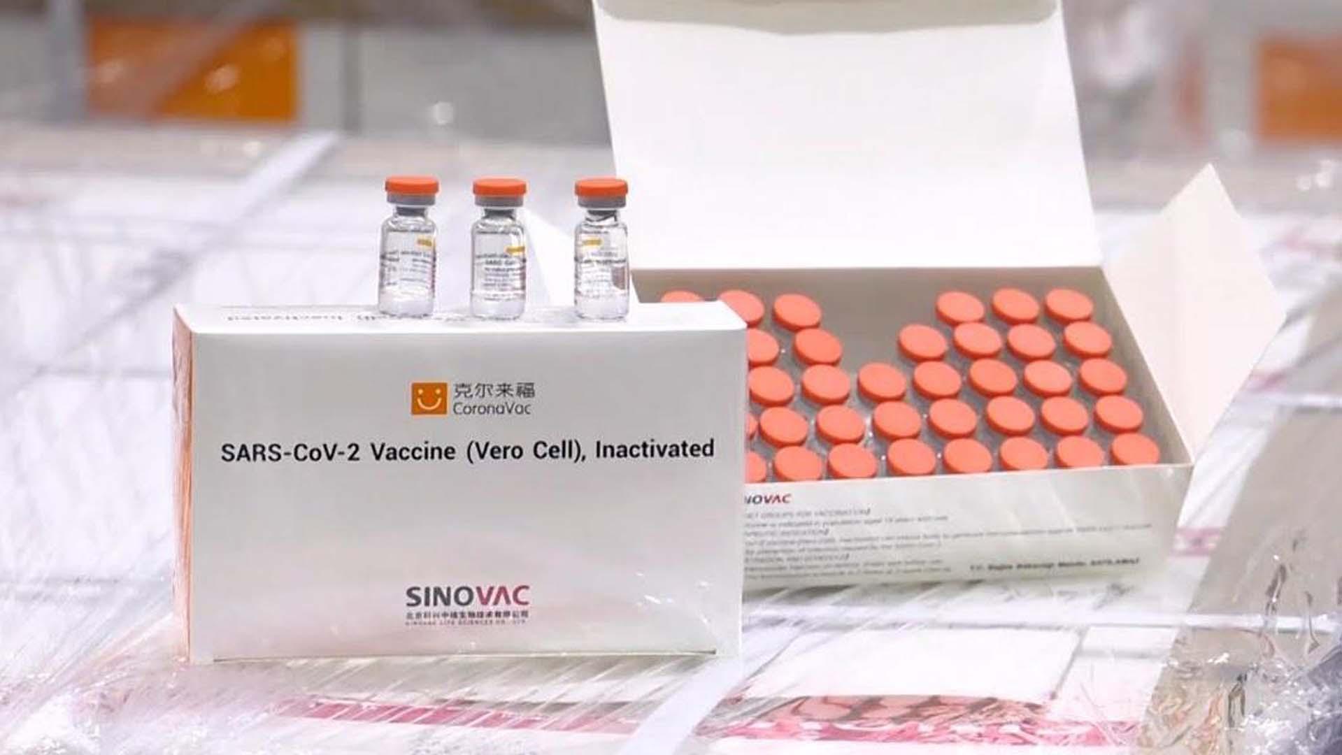 Türk Toraks Derneği'nden CoronaVac aşısının etkilerine ilişkin çalışma