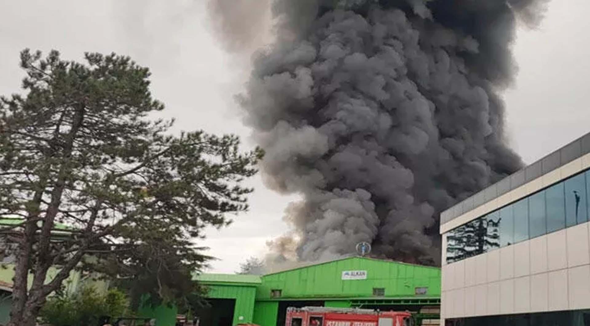 Son dakika | İstanbul Şile'de fabrika yangını: Patlama sesleri duyuldu