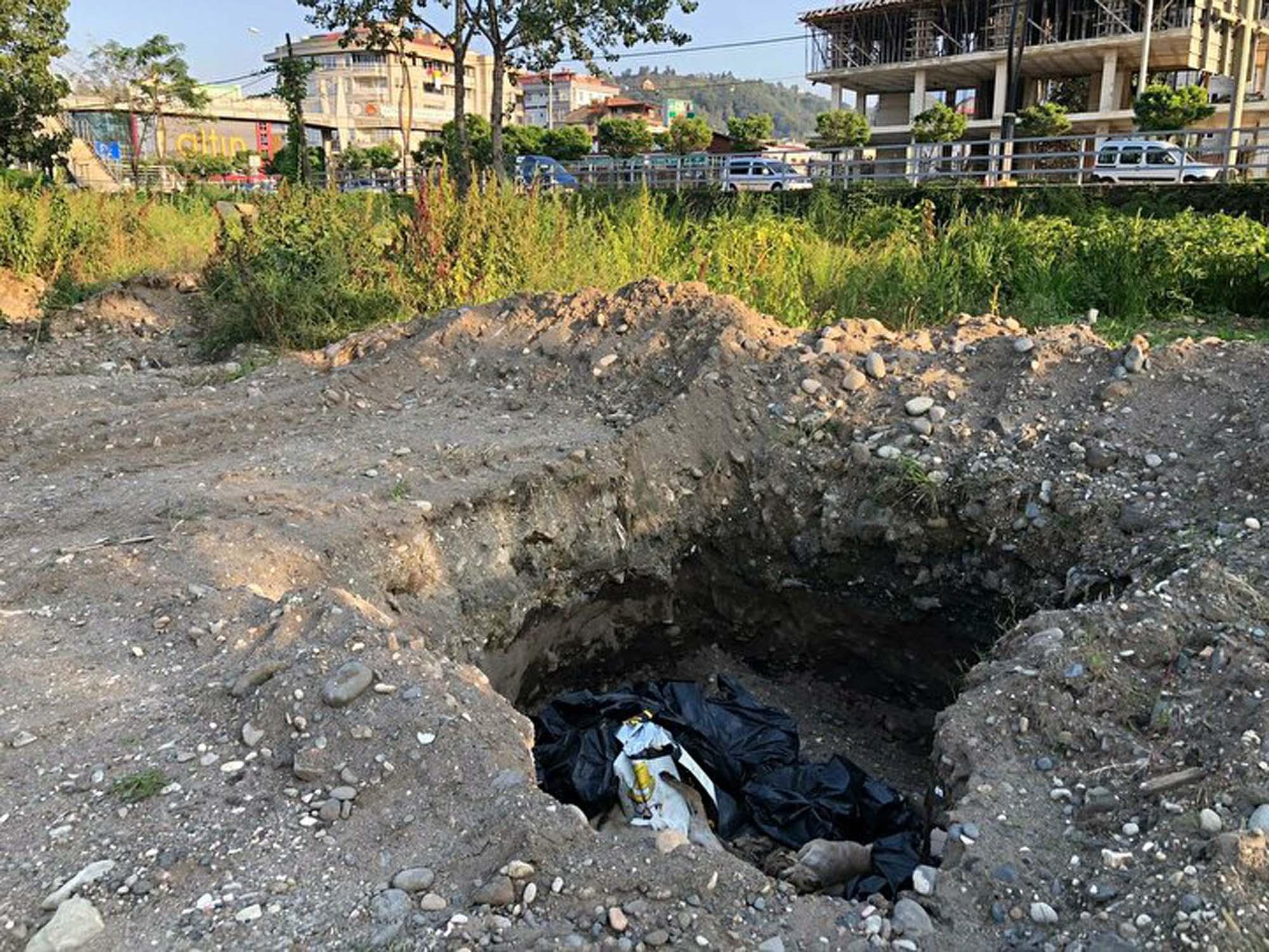 Giresun'da akıllara durgunluk veren olay! Çukurun içinde 10 adet ölü köpek bulundu!