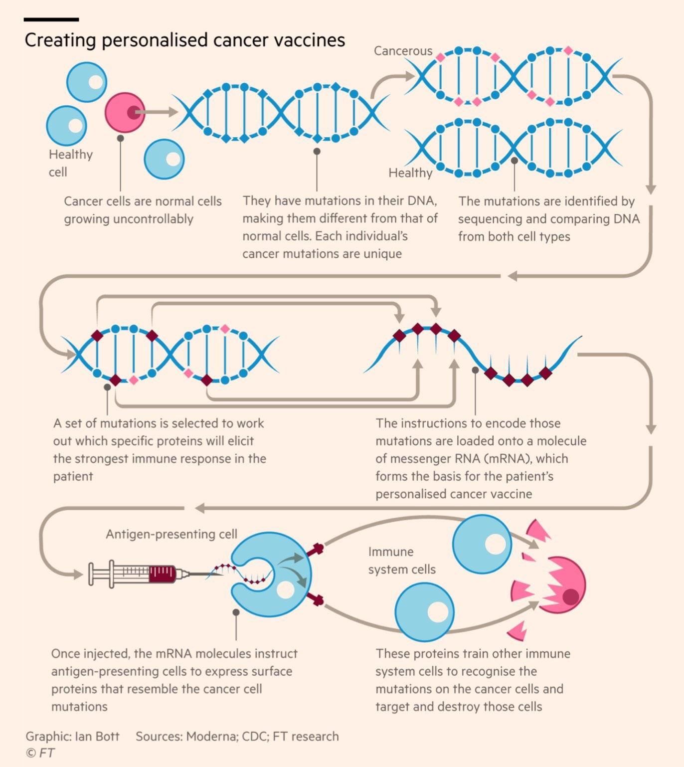 Prof. Dr. Güner Sönmez: mRNA aşılarının Covid 19'daki başarısı modern tıpta bir devrimi müjdeliyor olabilir
