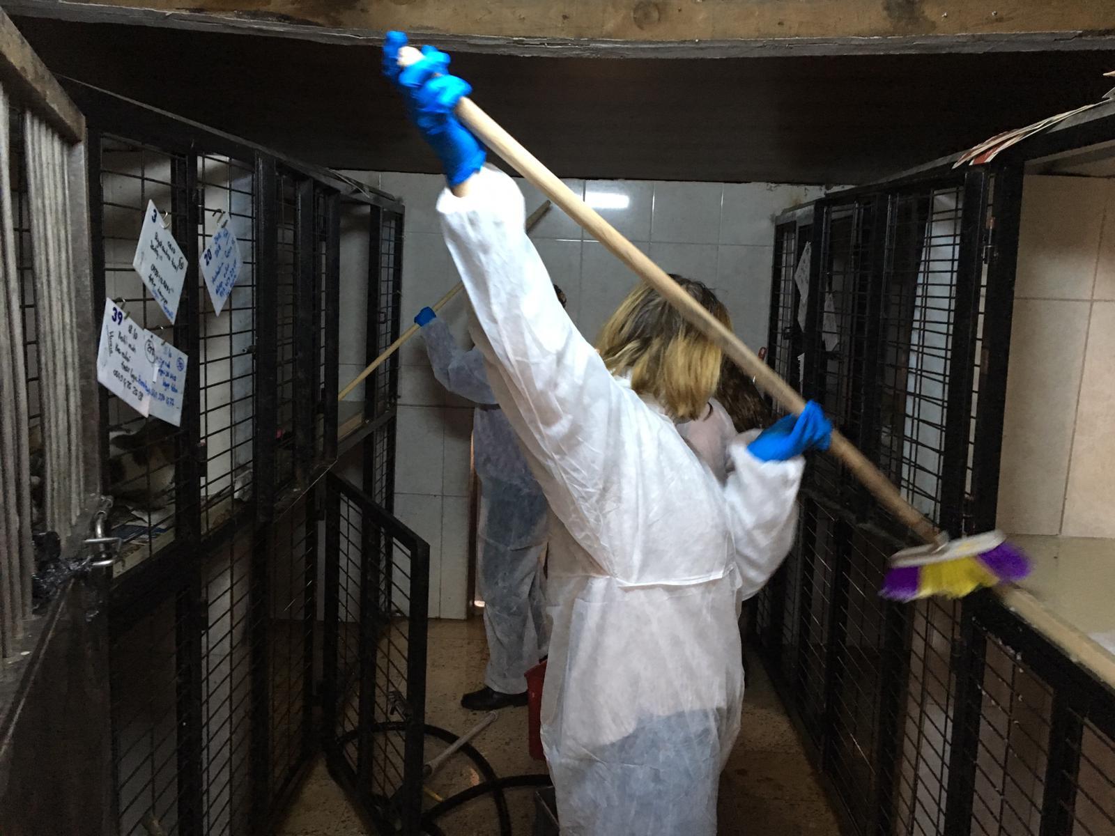 MÜHAK gönüllüleri hayvan barınaklarını ziyaret etti