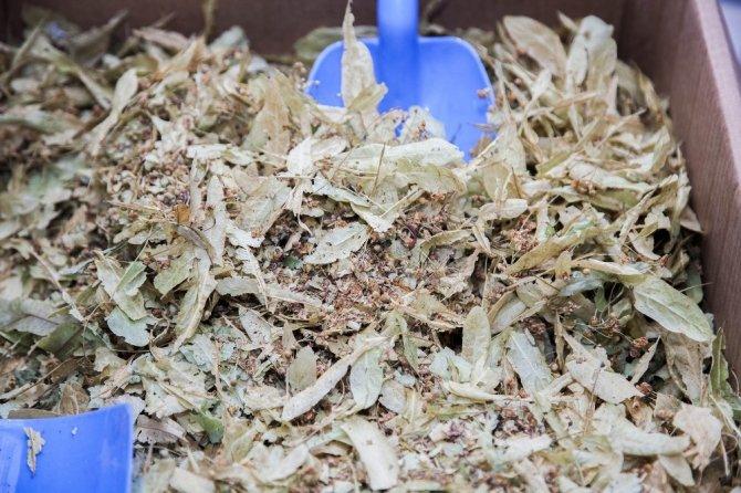 Ahlat'ta bitkisel çay satışları arttı