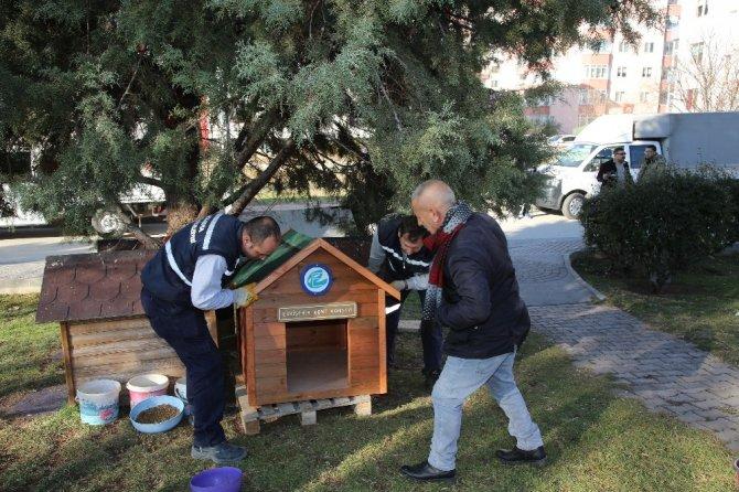 Sokak hayvanlarına yeni kulübeler