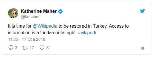 Sorunlu Makaleler Düzeltildi | Wikipedia Erişime Açılacak mı?