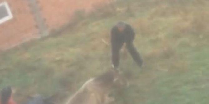 Sakarya'da hayvan vahşeti! 'Geber' diyerek ilk önce dövdü, sonra kesti!