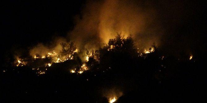 Adana'daki orman yangınını söndürme çalışmaları sürüyor!