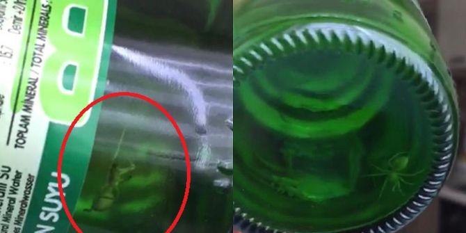 Kapağı açılmamış maden suyu şişesinden örümcek görenleri hayrete düşürdü!